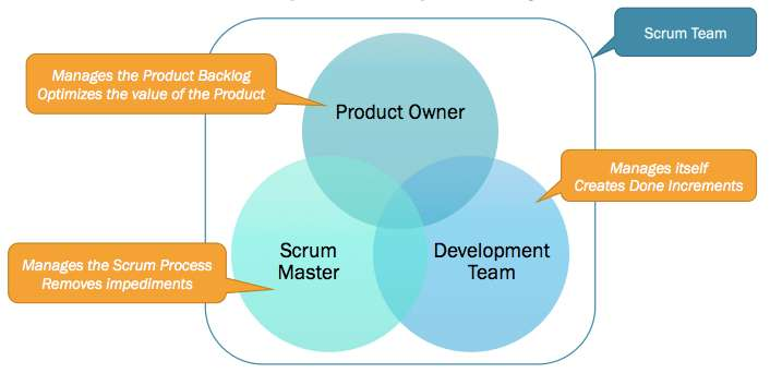 The 3 Scrum Roles